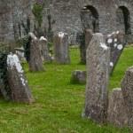 Saint Anne Graveyard — Stock Photo #9980679
