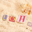 Hawaii beach - Stock Photo