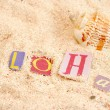 Hawaii beach — Stock Photo #7973641