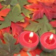 Candles and leaves — Stock Photo #7975004