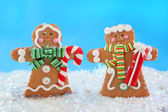 Gingerbread couple — Stock Photo