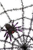 Black spiderweb — Stock Photo