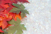 Fall and winter — Stock Photo