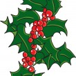 Christmas holly — Stock Vector #8062557