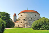 Tallinn. Fat Margaret Tower — Stock Photo