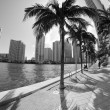 Stock Photo: Detail of Chopin Plaza, Miami