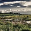 Countryside of Massachusetts - Stockfoto