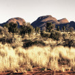 Australian Outback Exploration — Foto de Stock