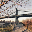 Stock Photo: ManhattBridge Detail with Tree, New York City