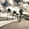 Streets of Fort Lauderdale, Florida - Stock Photo