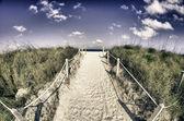 Detail der south pointe in miami beach — Stockfoto