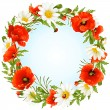 Stock Vector: Vector camomile and poppy frame in the shape of circle
