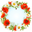 Vector camomile and poppy frame in the shape of circle — Stock Vector