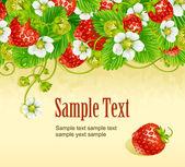 Marco de vector fresa. baya roja y blanca flor — Vector de stock