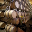 Grgich Hill Winery - Stock Photo