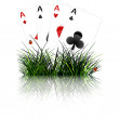 Four aces behind grass reflected — Stock Vector