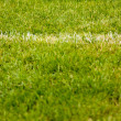 White stripe on the green grass soccer field — Stockfoto
