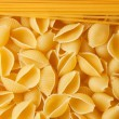Close up shoot of different types of raw pasta. — Stock Photo