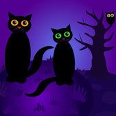 Cats at night — Stock Vector