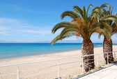 A praia com palmeiras e montanha olympus em fundo, ha — Fotografia Stock