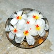 Jasmin flowers as SPA decoration, Bentota, Sri Lanka — Foto de Stock