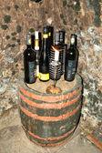 TOKAJ REGION-MARCH 11: Set of Tokaj wines bottles in the wine ce — Stock Photo