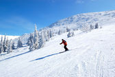 JASNA-MARCH 15: Skier rides on a slope in Jasna Low Tatras. It i — Stock Photo