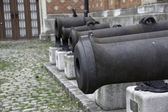 Old Cannons — Stock Photo