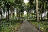Castle and park of Beloeil in Belgium — Stock Photo