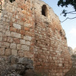 Crusaders castle ruins in Galilee - Stock Photo