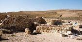 Tel arad national park — Stock Photo