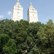 Walk in new york central park — Foto Stock