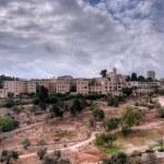Jerusalem view — Stock Photo #8957947
