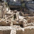 Stock Photo: City of David excavations