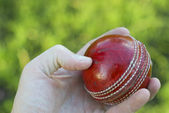 Hand Holding Cricket Ball — Stock Photo