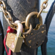 Stock Photo: Two locks on circuit.