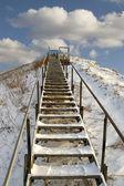 Ladder. — Stockfoto
