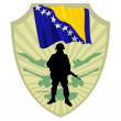 Stock Vector: Army of Bosniand Herzegovina