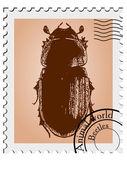 Sello de vector con una ilustración de un escarabajo — Vector de stock