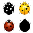 Royalty-Free Stock Vector Image: Set vector illustration of ladybirds