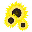 Sunflower. vector — Stock Vector #8222561