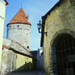 Old Tallinn fortress wall — Stock Photo