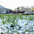 Royalty-Free Stock Photo: Grass and snow
