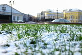 Trawa i śnieg — Zdjęcie stockowe