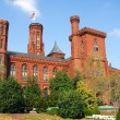 Smithsonian Institution Building — Stock Photo