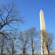 washington dc monument — Stock Photo