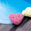 Flower hearts near swimmong pool — 图库照片