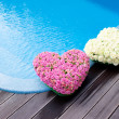 Flower hearts near swimmong pool — Stock Photo
