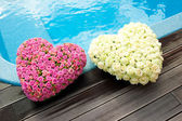 Flower hearts — Stock Photo