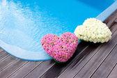 Çiçek kalpler swimmong havuzu yakınlarında — Stok fotoğraf